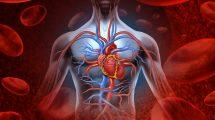 improve blood circulation